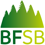 bracknell forest safeguarding board logo